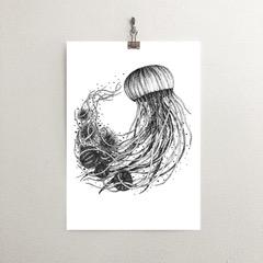 Jelly Fish illustration, White Thistle Design