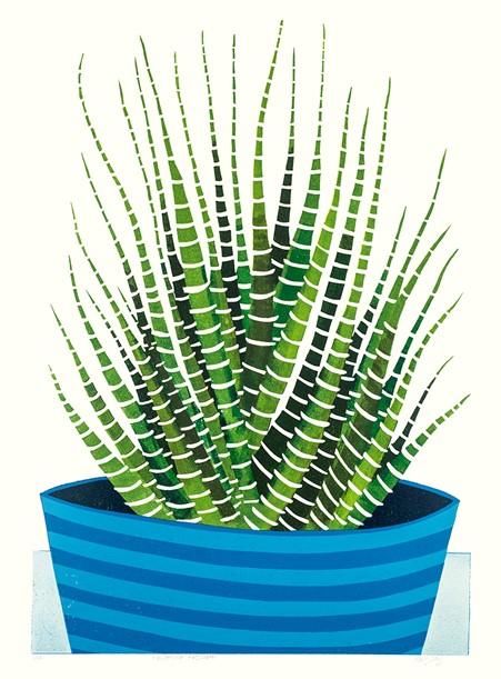 Kerry Day - print of colourful green succulent called Haworthia Fasciata
