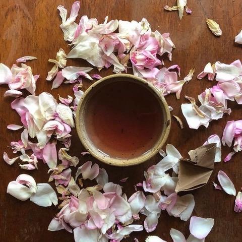 Bohobo Aromatherapies - teacup with rose petals